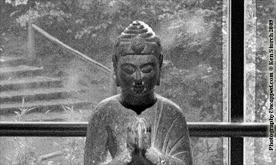 Bhudda Photo (detail)