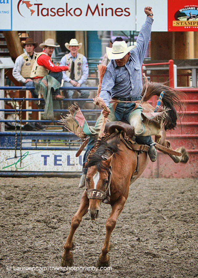 rodeo8 The lovely work of Laureen Carruthers Photography in Canada