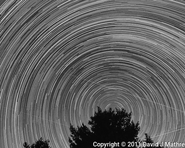 North View Star Trails. Summer Night in New Jersey. Image taken with a Nikon D3s and 24 mm f/1.4G lens (ISO 400, 24 mm, f/4, 30 sec). Composite of 326 images combined using the Startrails program. Converted to B/W with Nik Silver Efex Pro 2. (David J Mathre)