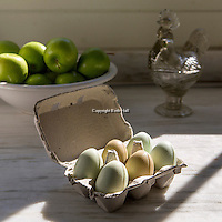 Product photography for P. Allen Smith. (Beth Hall)