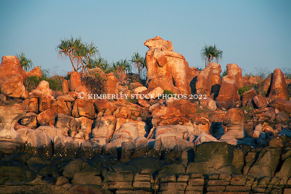 Pandanus tops the tideline at Wailgwin Island on the Kimberley coast. (Annabelle Sandes/© Annabelle Sandes   Kimberley Media 2010)
