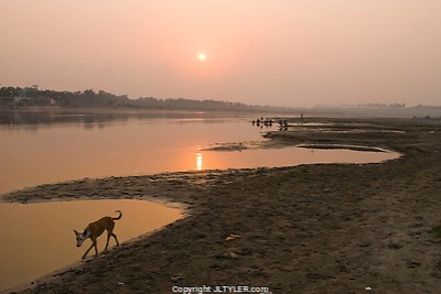 The Traveler's Photography Website; India's Best Images Revealed (J.L. Tyler)
