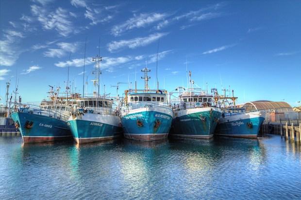 5 Boats (Tristan Jud)