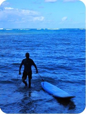 turtle bay surfing