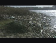 Il degrado ambientale del fiume Mesima continua, alla faccia di tutto e di tutti, 1 puntata
