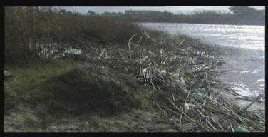 degrado-ambientale-fiume- mesima