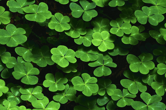 7 Ways To Make Your Own Good Luck