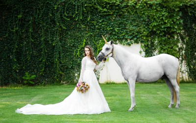 The Mayo Hotel Editorial | Brides of Oklahoma Magazine
