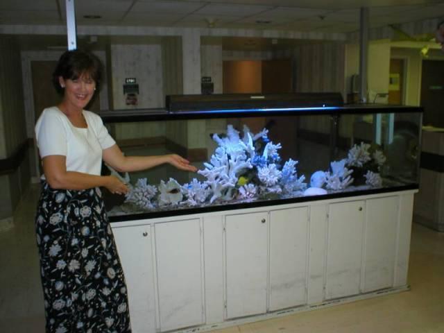 fish aquariums for sale