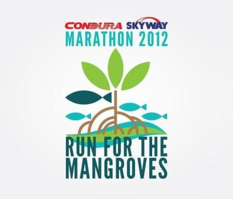 condura skyway marathon 2012