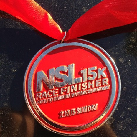 nsl-2013-medal