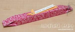 stampin-up_verpackungen_amicelli_kein-geburtstag-ohne-kuchen_pinselschereco_alexandra-grape_02