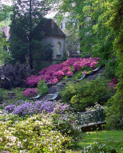 winterthur gardens steps