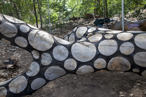 cottonwood tree scorched wood art from Stuart Frost