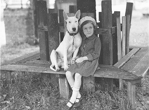 Bull terrier and australian girl circa 1934