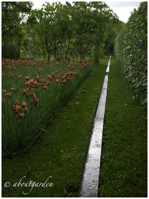 Alchemist's garden rill by about gardens via www.pithandvigor.com