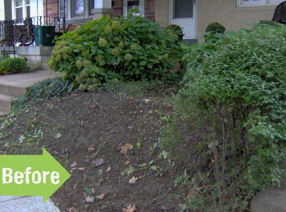 front yard, city, stones, landscape, enhance, improve, plants, hostas, stones