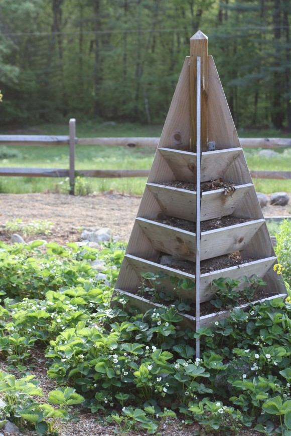 What To Do With The Strawberry Tower?