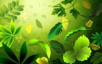 Green Leaves Wallpapers   PixelsTalk.Net