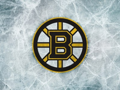 Boston Bruins Logo HD Wallpapers. | PixelsTalk.Net