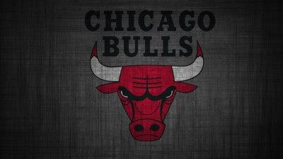 Chicago Bulls Logo Wallpapers HD | PixelsTalk.Net