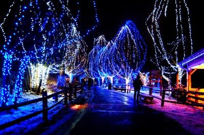 Free HD Christmas Lights Wallpapers | PixelsTalk.Net