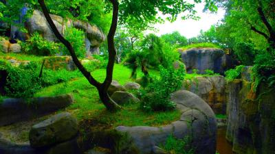 1080P 3D Images | PixelsTalk.Net