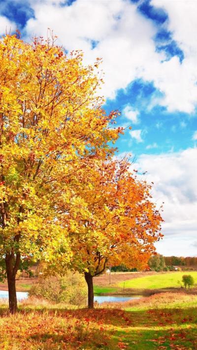 Free Fall iPhone HD Wallpapers | PixelsTalk.Net