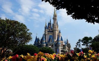 Disney Castle Wallpapers HD | PixelsTalk.Net