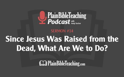 Since Jesus Was Raised from the Dead, What Are We to Do? (Sermon #14) - Plain Bible Teaching