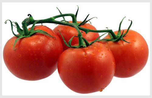 tomate fruit ou legume