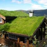 Techos verdes suecos