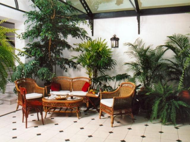 Decoraci n del jardin de invierno - Jardin de interior ...
