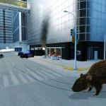 rat_kate_giant