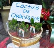 cactus ordenador