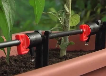 microirrigazione
