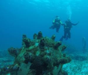 Playa del Carmen Diving
