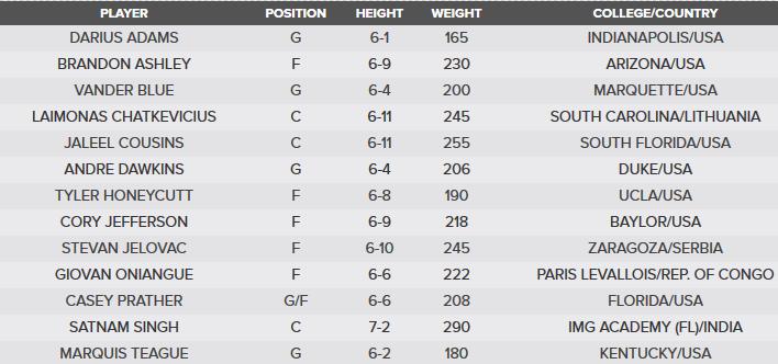 Dallas Mavericks Roster NBA Summer League 2016