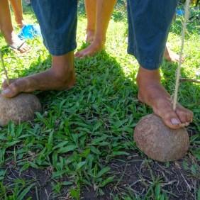 Echasse en noix de coco