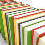 Plataforma y las trabas a los libros