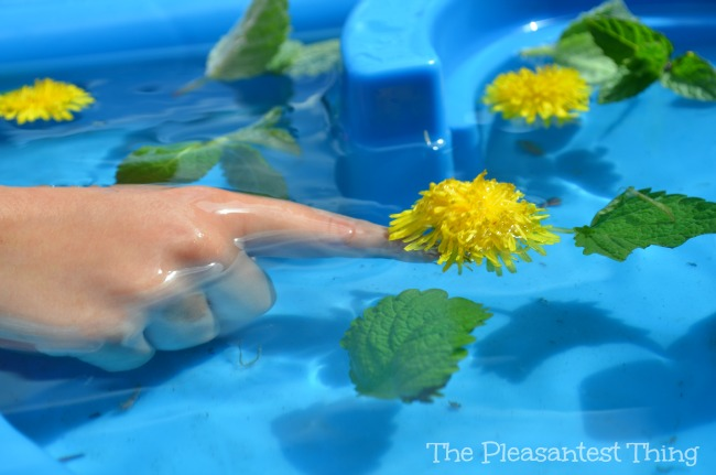 Sensory spring water table: sights, touches, and smells of Spring!