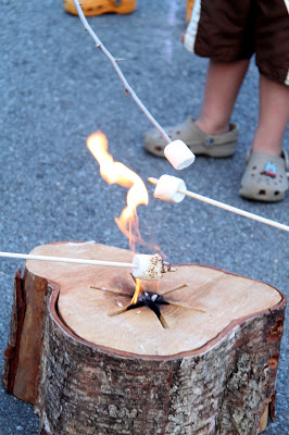 Cook s'mores over a flame (Busy Kids = Happy Mom)