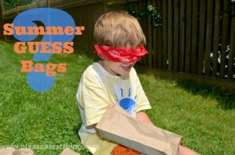 Summer Guess Bags: an activity focusing on the sense of touch