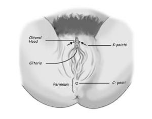 Kivin Method of Cunnilingus