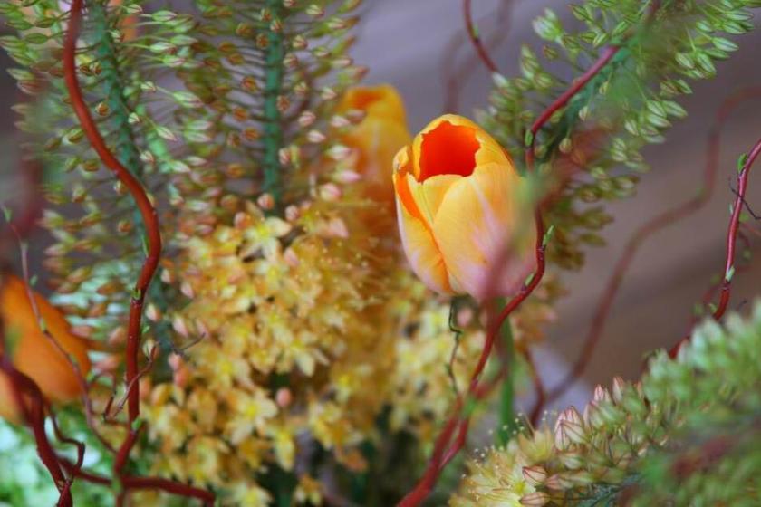 Blumengruss_zu_Ostern_2
