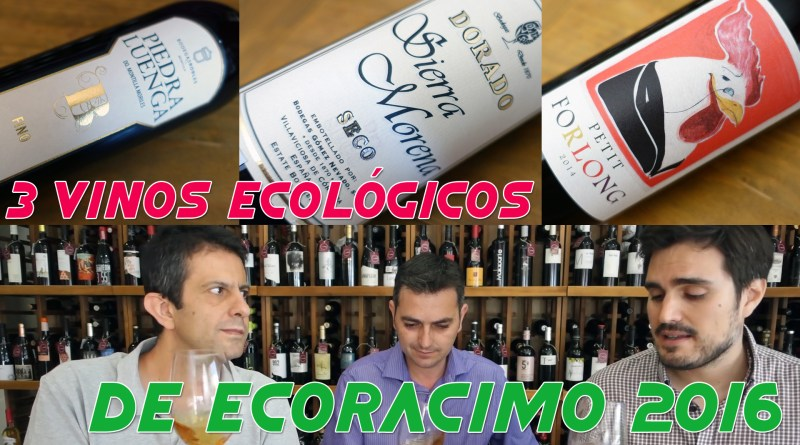 Plantilla_MINIATURA_ecoracimo