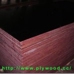 The Black Film Faced Plywood Sold On China Domestic Market