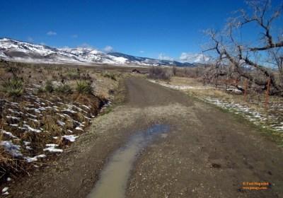 sage-trail-002