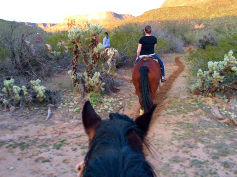 Western Destinations, Phoenix AZ