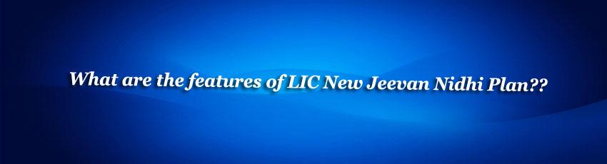 LIC New Jeevan Nidhi Policy